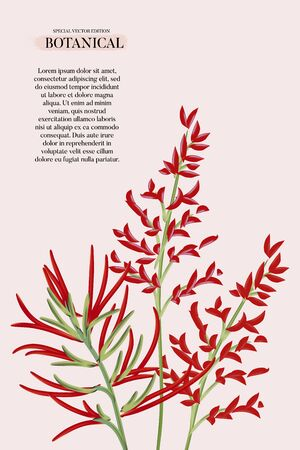 Modern red exotic Floral wedding invitation card, poster design template, party greeting concept text lettering on pink pastel vintage theme Фото со стока - 136547266