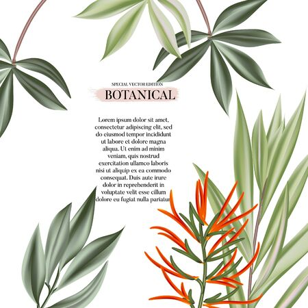 Exotic flowers and leaves decoration. Modern realistic design with jungle  leaves template for the hotel, beauty salon, spa, restaurant, club. Vector illustration.
