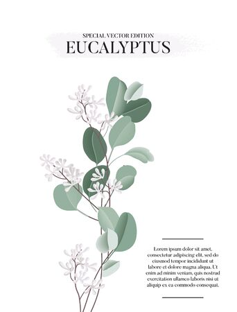 Eucalyptus floral watercolor art card template, hand-drawn vector concept with liquid flower and leaves. Realistic greeting template, wedding graphics, holiday bouquet greenery decoration. Иллюстрация