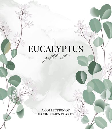 Eucalyptus floral watercolor art Wedding card, hand-drawn vector concept with liquid flower and leaves. Realistic greeting template, foliage graphics, bouquet greenery decoration Фото со стока - 137640898