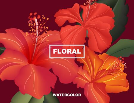 Hibiscus spring flower exotic bloom. Hawaii blossom floral paradise card . Wild bouquet summer nature realistic vector.