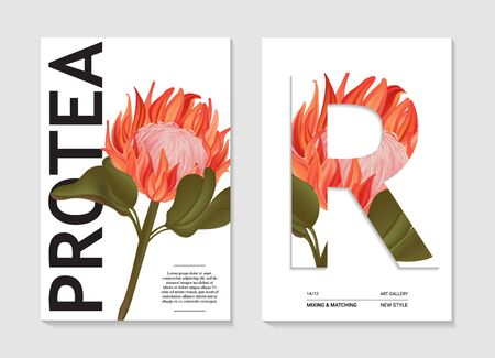 Watercolor nature realistic protea art in vector. Garden plant australian or african flower. Big wild botanical illustration poster design. Contrast Exotic decoration Иллюстрация