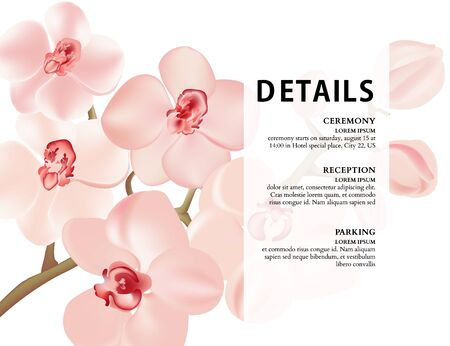 Orchid branch realistic illustration. Vector nature poster, romantic postcard, soft pink flower bloom. Save the date floral botanical poster