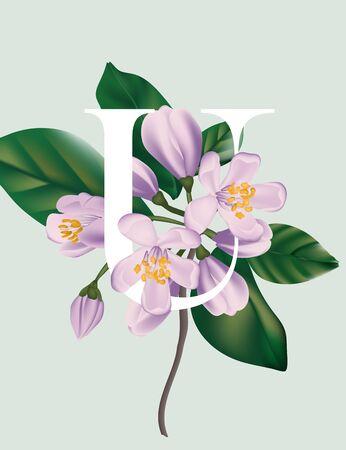 Cherry bloosom violet flowers branch, tender bloom illustration. Japan spring illustration, nature design, garden flora background. Vector.