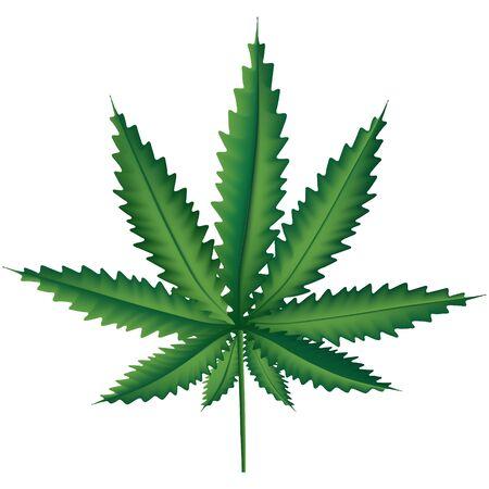 Medizinisches Marihuanablatt, Marihuana-Pflanzenillustration, Hanfblatt, Natur entspannen Symbol im Vektor.