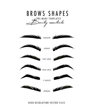 Brow bar poster, microblading eyebrows shapes realistic vector art. Beauty salon drawing, makeup artsit. Henna brows shapes poster, natural hair drawing in vector. Stock Illustratie