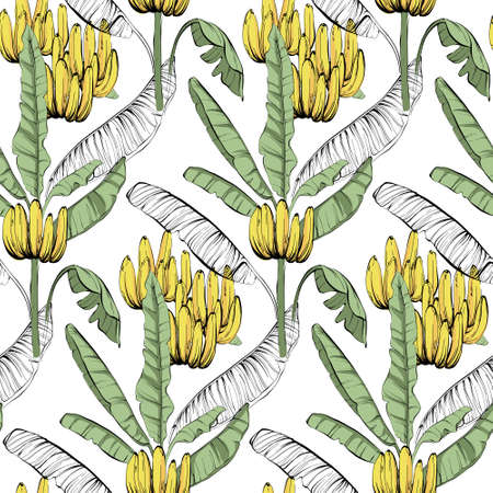 Banana custom jungle fabric seamless pattern, tropical exotic home decor wallaper, textile cloth design. Line art sketch unique creative summer vibes, wild nature background in vector