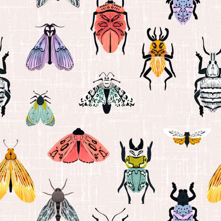 Insect butterfly and bugs seamless pattern, summer patel illustration