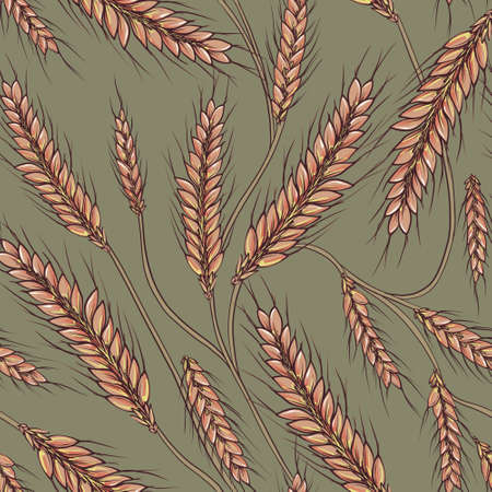 Wheat field grain seamless pattern.GOlden rural plant background  Late summer and autumn desing, Outdoor farming print.