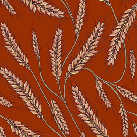 Wheat field grain seamless pattern. Cereal crop background. Late summer and autumn desing, Outdoor farming print. 免版税图像
