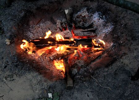 A bonfire in a forest in the evening in the summer camp