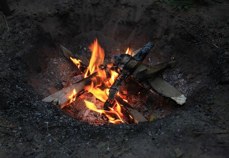 A bonfire in a forest. The summer tourism camp
