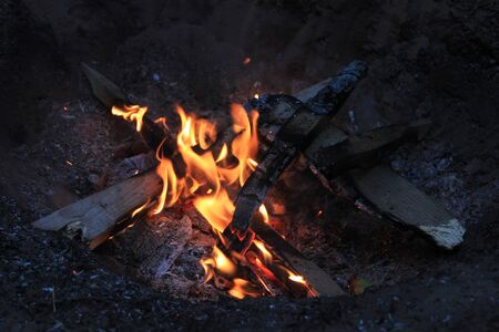 A bonfire. The summer tourism. A forest camp in the evening