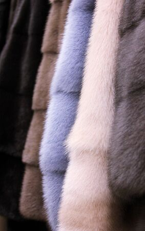 The fur coats. The furry background. In the wear shop
