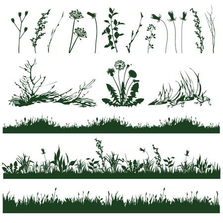 장식 잔디의 요소와 나뭇 가지의 실루엣 일러스트