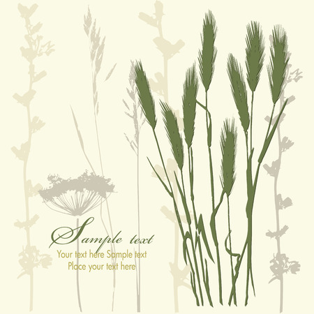 background with wheat ears and branches. vector illustration Vector