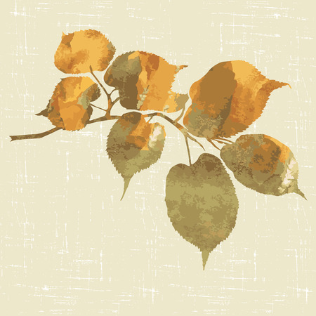 linden tree: background with decorative branch of linden. vector illustration Illustration