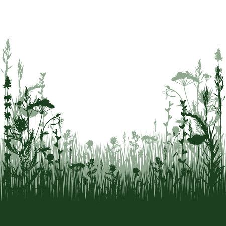 실루엣 초원 잔디와 식물의 나뭇 가지입니다. 벡터 일러스트 레이 션