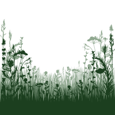silhouette meadow grass and twigs of plants. vector illustration Çizim
