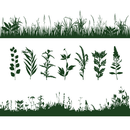 silhouettes meadow grass and twigs of plants. vector illustration Illustration