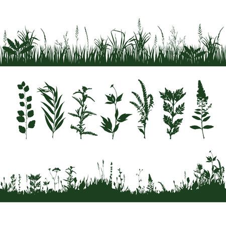 meadow  grass: siluetas prado de hierba y ramas de plantas. ilustraci�n vectorial Vectores