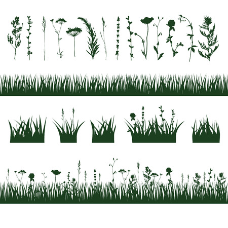 silhouettes meadow grass and twigs of plants. vector illustration Çizim