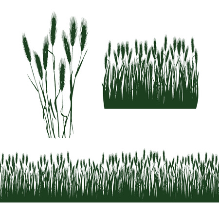 silhouettes of decorative elements of grass and ears of wheat Çizim