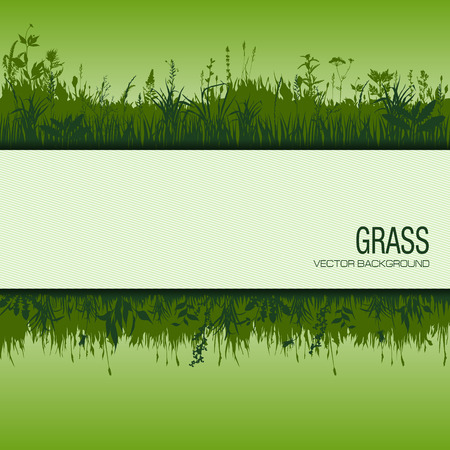 grass vector: abstract background with green grass. vector illustration