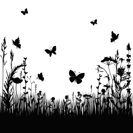 silhouettes grass and twigs of plants with butterflies. vector illustration
