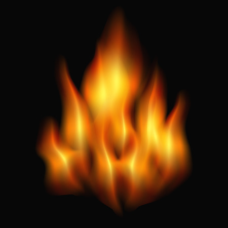 inferno: burning fire on a black background. vector illustration