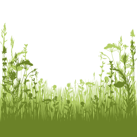 silhouette meadow grass and twigs of plants. vector illustration Illustration
