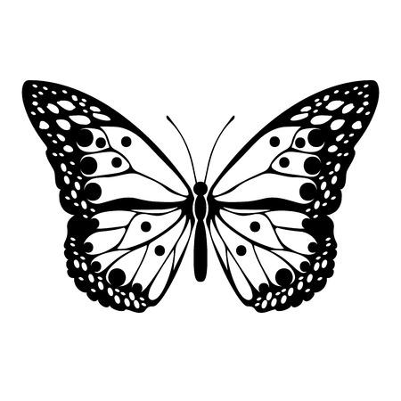 Silhouette noire de papillon sur fond blanc. Élément de design abstrait décoratif. Illustration vectorielle Banque d'images - 102982782