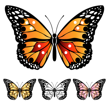 Helle bunte Schmetterlinge. Satz filigrane mehrfarbige Schmetterlinge. Dekoratives abstraktes Gestaltungselement. Vektorillustration