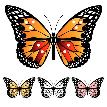 Papillons colorés lumineux. Ensemble de papillons multicolores en filigrane. Élément de design abstrait décoratif. Illustration vectorielle