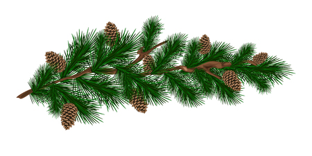 Christmas decorations with fir tree and pine cones. Design element for Christmas decoration. Vector illustration Vettoriali