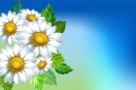 Background with chamomiles. Spring decorative flowers. Blue sky background template for banners. Vector illustration. Ilustrace