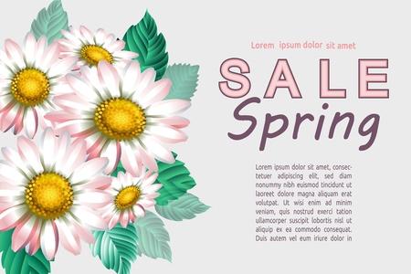 Fondo con manzanilla. Flores decorativas de primavera. Plantilla para pancartas. Ilustración vectorial.