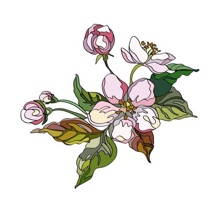Apple ornament with branches, leaves and flowers. Decorative floral elements. Vector illustration