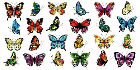 Set of different multicolored butterflies. Collection of fantasy colorful vector butterflies. Vector illustration