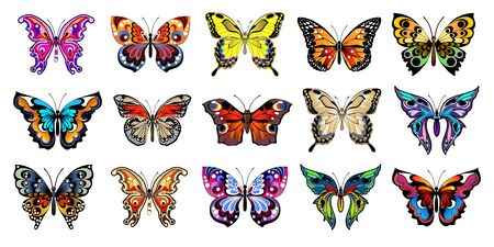 Set of multicolored butterflies. Collection of colorful vector butterflies. Vector illustration  イラスト・ベクター素材