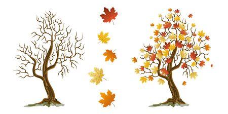 Decorative autumn tree with maple leaves. Vector illustration. Иллюстрация