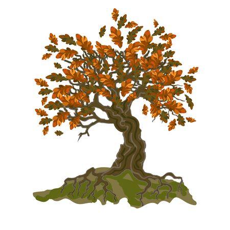 Decorative autumn tree with oak leaves. Vector illustration.