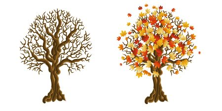 Beautiful decorative tree with bright maple leaves. Vector illustration.