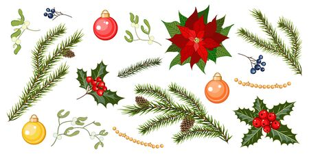 Set with fir tree branches, holly berries, mistletoe, poinsettia flower and balls isolated on white background. Design elements for Christmas decoration with fir tree, holly, berries, balls and poinse