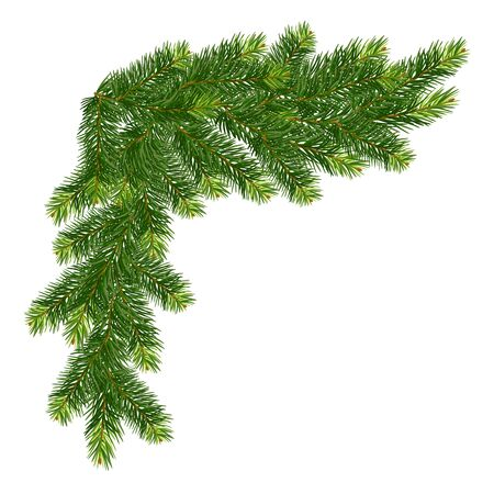 Naturalistic christmas decoration from a branches of a fir. Vector illustration.