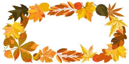 Autumn card. Bright colorful autumn leaves. Happy Thanksgiving Background with Falling Autumn Leaves. Vector Illustration