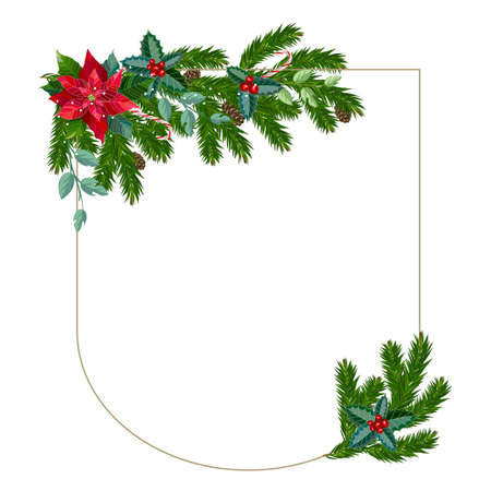 Christmas frame from fir branches and the poinsettia flower. Vector illustration.
