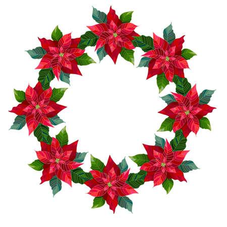 Christmas wreath from poinsettia flowers. Vector illustration. Ilustração