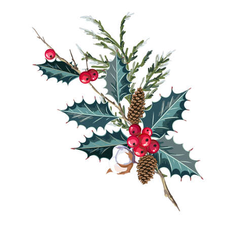 Christmas bouquet with holly berries and cotton branches. Vector illustration.