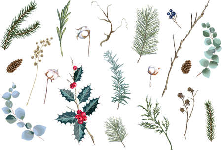 Set of decorative Christmas elements. Floral decor collection for decoration. Vector illustration.